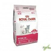 ROYAL CANIN - Kitten (conf da 2 e 10 kg) [GATTO]