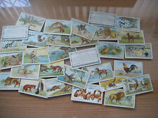 """PICK-A-CARD- GALLAHERS """"FABLES & THEIR MORALS"""" THICK NOS: 51-100-NEW CARDS ADDED"""