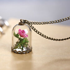 Pink Dried Wild Flower Glass Dome Necklace, Beauty and the Beast, Bronze Gift