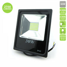 Proyector de Led 30W Quiron