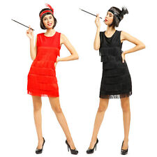 Ladies Womens Charleston Flapper 19s Fancy Dress Costume Adult Charleston Outfit