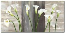 Quadro Jenny Thomlinson 'Country Callas' Stampa su Tela Canvas