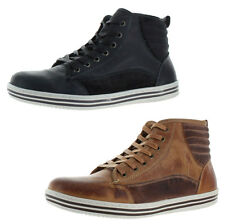 Steve Madden Ralphy Men's Hightop Casual Fashion Sneakers Shoes
