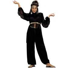 Adult Black Harem Dancer Costume