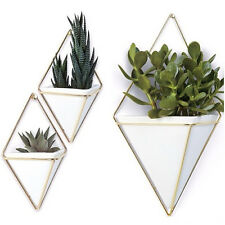 Umbra Trigg Pyramid Urban Industrial Concrete Wall Planters Holders Vase Sizes