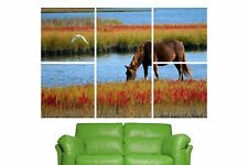 5 Piece Self Adhesive Horse Grazing Wall Sticker Poster M13-162
