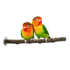 Pet Parrot Raw Wood Fork Stand Rack Toy Branch Perches For Bird Cage 1Pcs