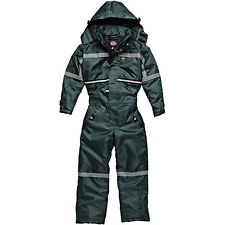 bambini Dickies impermeabile MISSIONE COPRITUTTO AGE 5 - 14 Years Verde wp7003