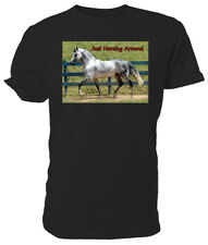 Dapple Grey Horse T shirt, Just Horsing Around - Choice of size & colours!