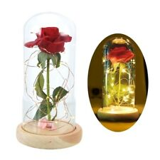 Rose in Glass Dome Led Wooden Base for Valentine's Gift Beauty and the Beast