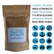 Turkey Tail Extract Powder Organic | 31% Polysaccharides | With Analysis!