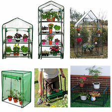 GARDEN WALK IN GREENHOUSE OUTDOOR  COLD FRAME WITH SHELVING & STRONG COVERS