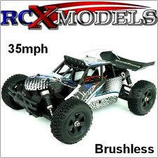 Fast RC Car Brushless Off Road 4x4 1/18 Mini Model Remote Control Truck Buggy