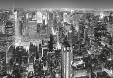 Papier Peint Photo Mural- NEW YORK SKYLINE (141i)- 366x254cm 8 parties-Manhattan