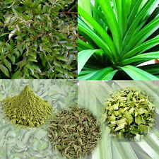 Fresh Dried Curry Leaves & Powder 100% Organic Natural Leaves from Ceylon 25g