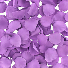 LoversPremium - Bed of Roses Purple or Red Lay a trail of roses for your partner