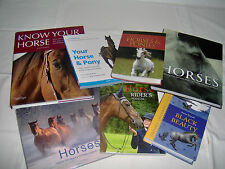 BOOKS - HORSES AND PONIES-GUIDE TO-HANDBOOK-CARE FOR-STORY-MANUAL