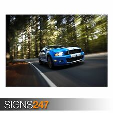 AB673 Photo Picture Poster Print Art A0 to A4 CAR POSTER FORD SHELBY GT CARS