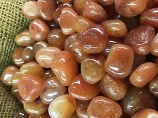 500 Carat Lots of Polished Tumbled Carnelian + FREE Faceted Gemstone