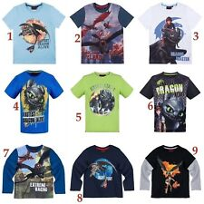 Boys Kids Children Dragons How to Train Your Dragon T-shirt Top Age 6 - 12