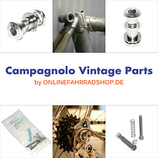 Campagnolo Vintage Frame Seatpost PinBolt Bolzen SP-RE104 dropout Screw adjuster