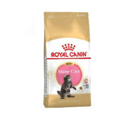 Pienso para gatitos Maine Coon (hasta 15 meses) ROYAL CANIN KITTEN MAINE COON