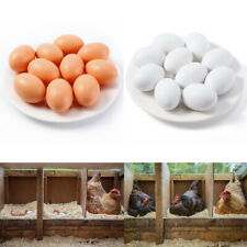 10pcs/Set Poultry Imitation Dummy Wooden Fake Chicken Eggs for Hen Coups Cages