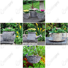 Choice of natural and novelty wicker baskets and planters