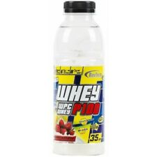Revtech Performance Nutrition Whey WPC P100 35 gr