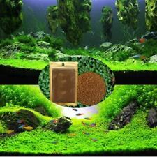 Aquarium Landscape Ornament Aquatic Water Grass Live Plant Seed