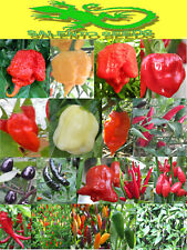 SEMI PEPERONCINO 19 VARIETA' A SCELTA SEEDS CHILLI PEPPER  HOT VARIETY ITALIA