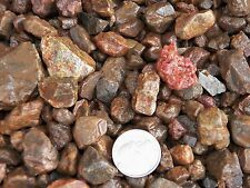 1000 Carat Lots of Ruby Rough - Plus a FREE Faceted Gemstone