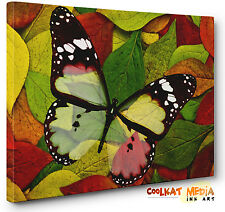 Abstract Canvas Butterfly Leaves Print Wall Art Picture A1 A2 A3 A4