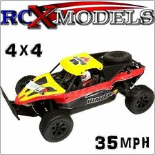 Fast RC Buggy Off Road Race Car Remote Control 4WD Electric Ver Of Nitro/Petrol