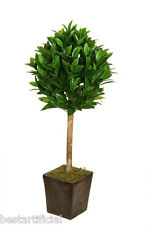 Best Artificial 3ft 90cm Bay Laurel Tree Tropical Plant Office Conservatory