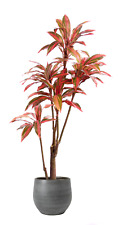 Best Artificial 5ft 150cm Red Dracaena Dragon Tree Plant Tropical Conservatory