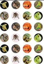 24 x REPTILES/LIZARDS/SNAKES/SPIDERS ICING & RICE/WAFER PAPER CUP CAKE TOPPERS