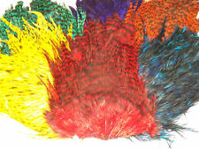 Grizzly Cock Saddle Cape, Grade AAA ,Choice from 7 colours,Fly tying feathers