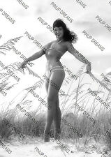 Bettie Page Fabulous Cult Pin-up Burlesque Rockabilly Photograph re-print