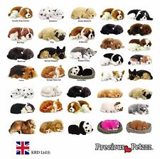 PRECIOUS PETZZZ Perfect Pets CAT DOG Lifelike Breathing Kids Toy Birthday Gift