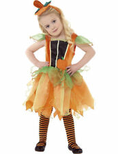 Child Boys Girls Toddler Pumpkin Fairy Halloween Fancy Dress Costume