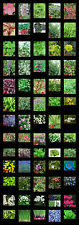 Herb Seed Pick-n-Mix. Select 1, 3, 6, 9, 12, 15, 18, 21 Varieties or Collection