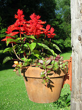 Plant Pot Hanger Terra Cotta Latch Clay Pots