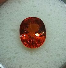 4.85ct. FANTA ORANGE SPESSARTITE FIRE ORANGE OVAL HUGE!