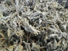Sage Leaf Dried Salvia Officinalis  Herbs  Supplyist  Sage Leaves FREE SHIPPING