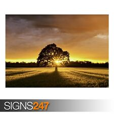 SUMMER LANDSCAPE (AE017) NATURE POSTER - Photo Picture Poster Print Art A0 to A4