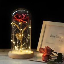 Rose In Flask Beauty And The Beast Gold-plated Red With LED Light In Glass Dome
