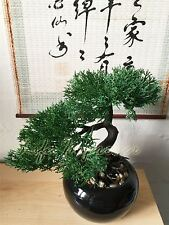 "10"" Artificial Bonsai Tree In Black Ceramic Pot Lifelike Plant Home Decoration"
