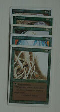 MTG Choose Your White Bordered Magic the Gathering Card - Green