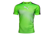 Puma Mens IT evoTRG S/S Graphic T-Shirt Top Tee Sports Training Workout Rugby